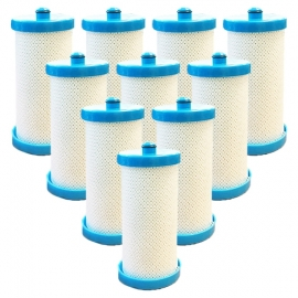 10x Westinghouse/Electrolux 1438545 Fridge Filter Generic 218904501