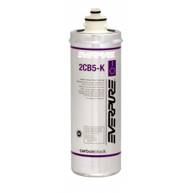 Everpure 2CB5-K EV9617-06 Replacement Filter Cartridge