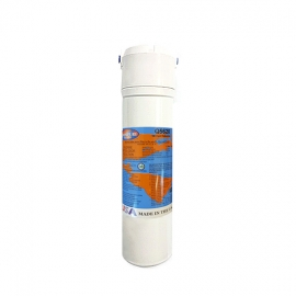 Q5620 Omnipure Replacement Filter Cartridge + Head