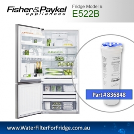Fisher & Paykel 836848 for E522B Genuine Fridge Water Filter