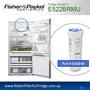 Fisher & Paykel 836848 for E522BRMU Genuine Fridge Water Filter