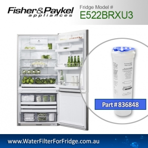 Fisher & Paykel 836848 for E522BRXU3 Genuine Fridge Water Filter
