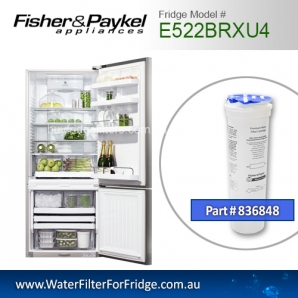 Fisher & Paykel 836848 for E522BRXU4 Genuine Fridge Water Filter