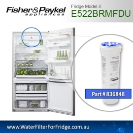 Fisher & Paykel 836848 for E522BRXU Genuine Fridge Water Filter