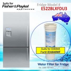Fisher & Paykel E522BLXFDU3 Fridge Model 836848/13040210 Replacement Filter Part