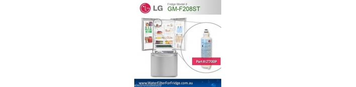 LG fridge model