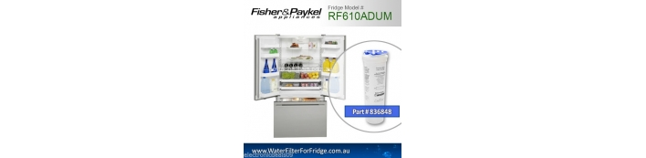 Fisher and Paykel  Fridge Model