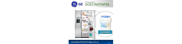 GE Fridge model
